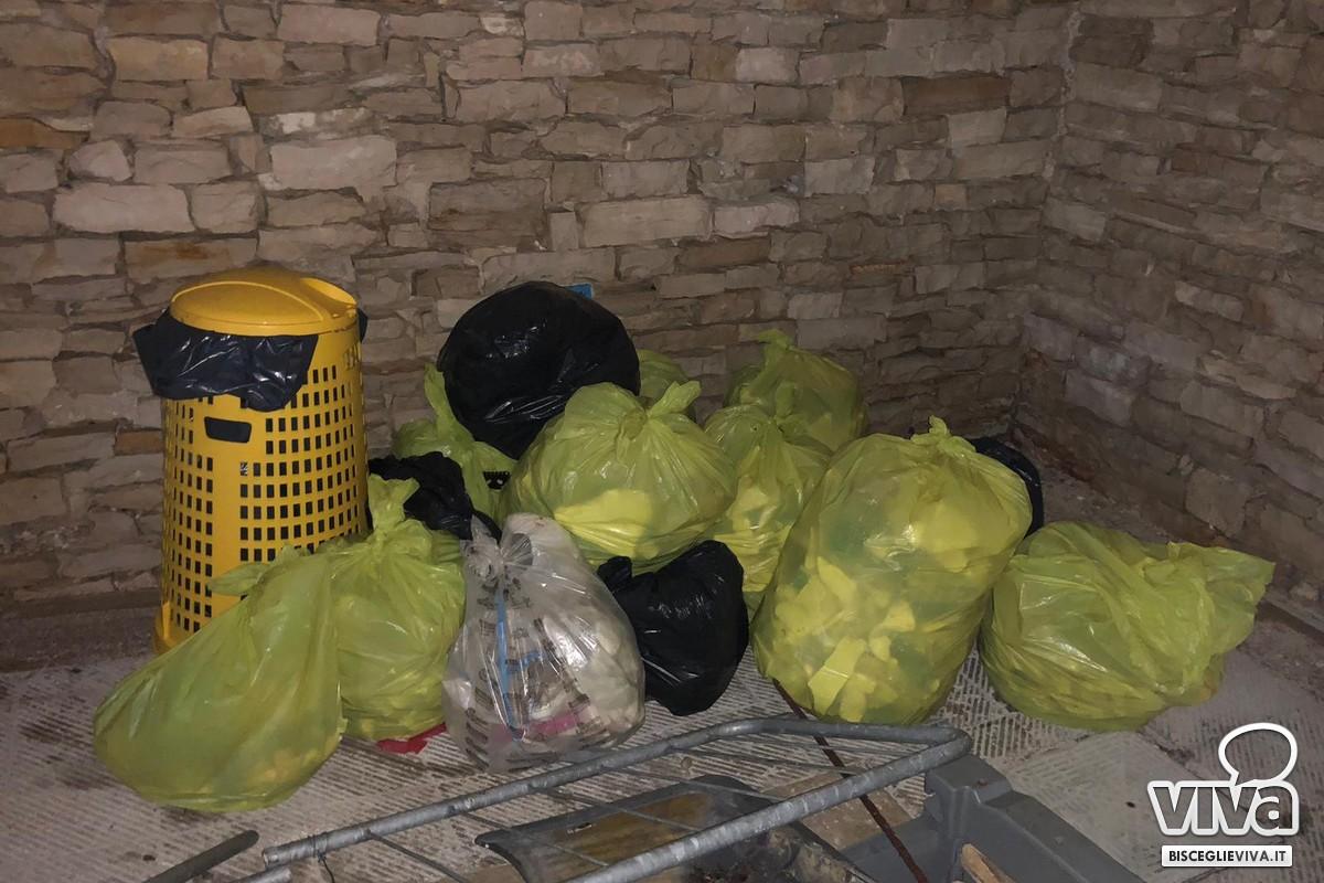 """L'associazione """"Muvt"""" ripulisce le spiagge della zona Salsello"""