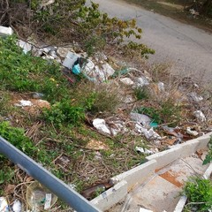 Pro Natura fotografa e segnala depositi di rifiuti sulla statale 16 bis
