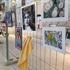 Concorso di arti visive Aido, i vincitori