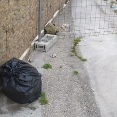 Immondizia tra via Abate Bruni e via Terlizzi