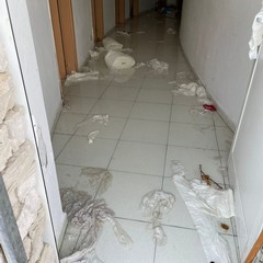Camerini e bagni del Teatro Mediterraneo di Bisceglie vandalizzati