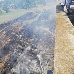 Incendi di sterpaglie, interventi dei mezzi dell'Oer