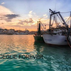 Bisceglie Forever - Gruppo facebook gestito da Matteo Di Reda