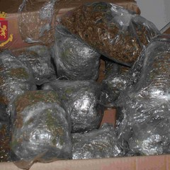 Marijuana sequestrata dalla Polizia di Stato
