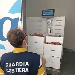 Prodotti ittici sequestrati dalla Guardia Costiera