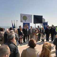 Il Rotary Club Bisceglie dona 50 alberi per la zona Pantano-Ripalta
