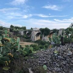 Ponte Lama