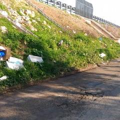 Cumuli di rifiuti in Via Mauro Contò