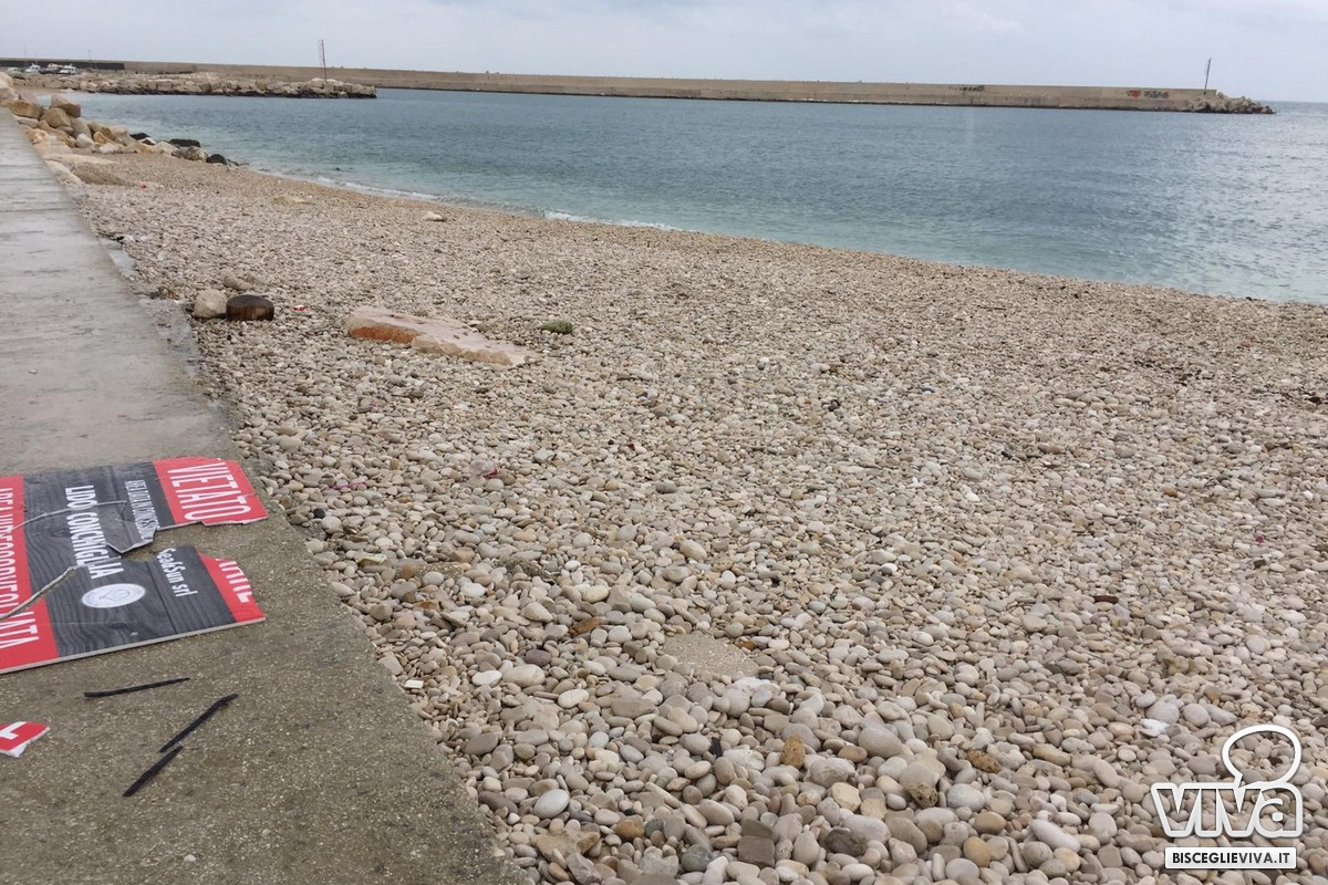 Interventi di pulizia al lido Conchiglia Adriatica