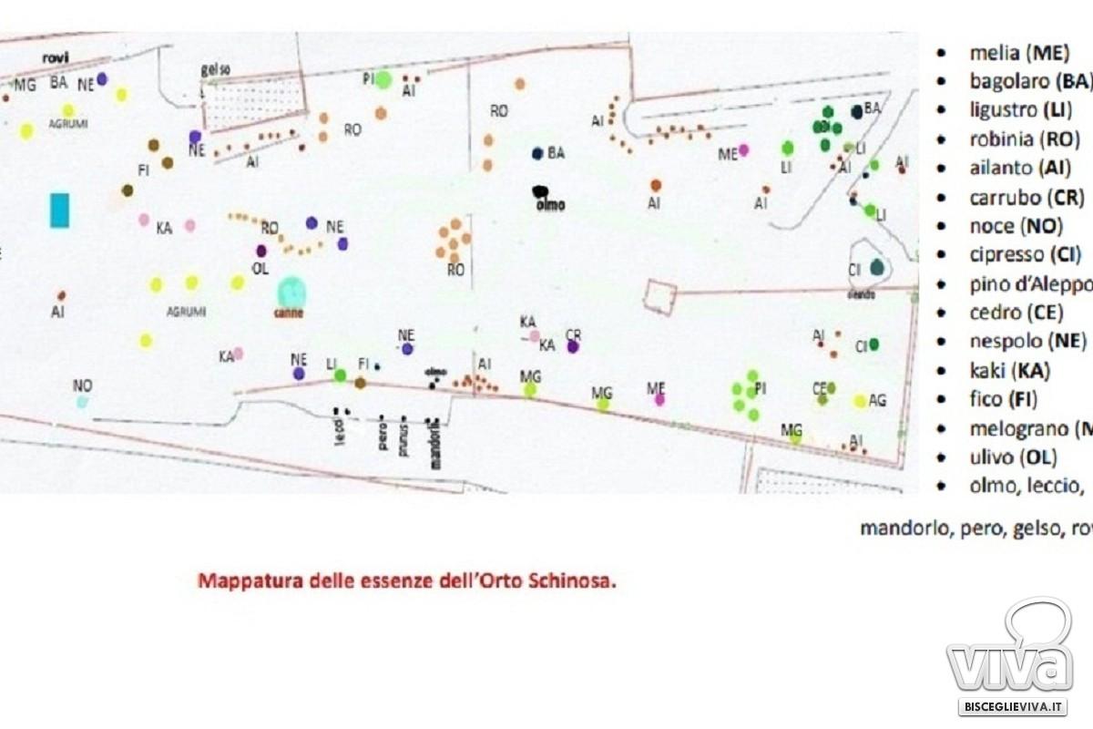 Mappatura Orto Schinosa