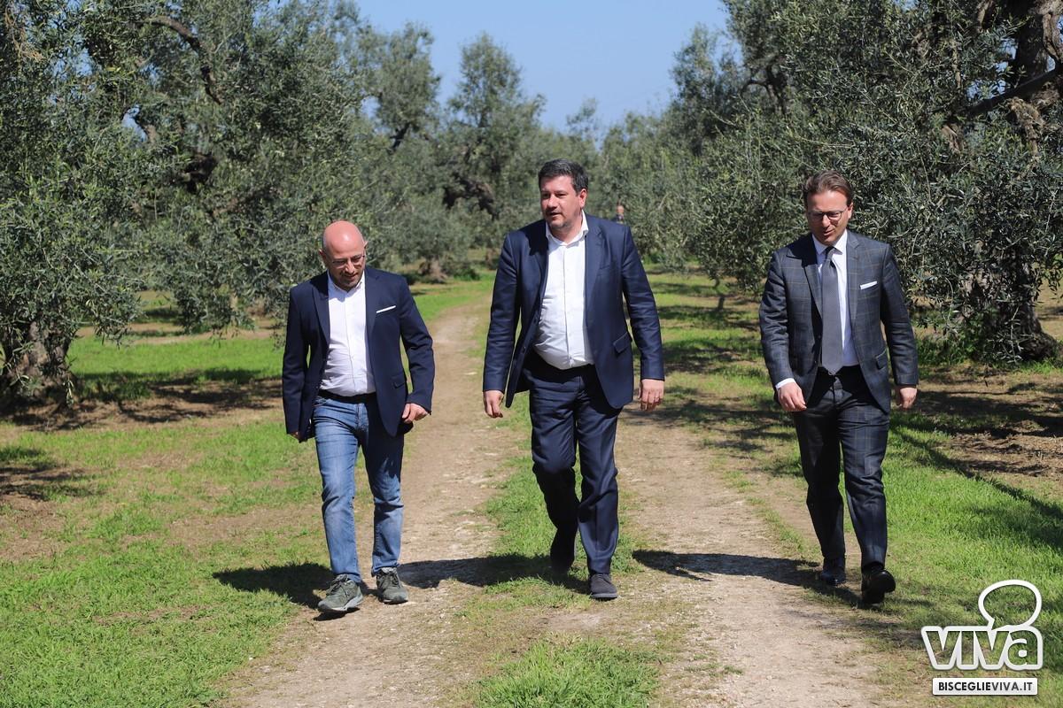 Domenico Damascelli, Sergio Silvestris, Dario Damiani