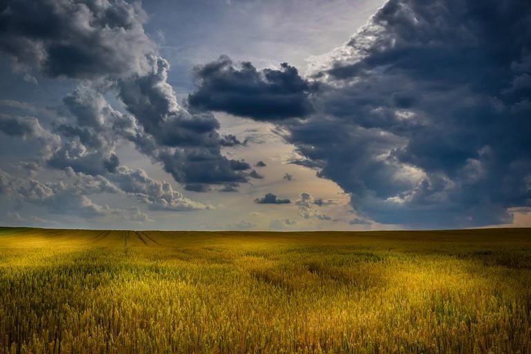 Agricoltura e paesaggio (repertorio)