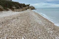 Spina: «Una bella spiaggia di ciottoli a Trani coi soldi dei biscegliesi?»