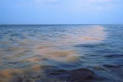 Legambiente: «Le chiazze in mare? Un microrganismo»
