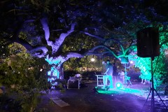 Una serata coinvolgente con Lorenzo Kruger al Giardino Botanico