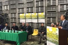 Spina: «Garantirò agli olivicoltori un risparmio sull'utilizzo delle acque per la coltivazione»