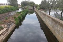I 5 Stelle: «Sversamento di acque reflue a Lama di Macina»