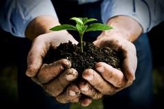 Workshop rivolto agli imprenditori agricoli promosso da Agromnia