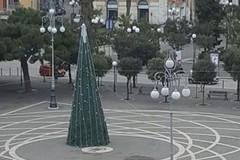 L'albero di Carnevale