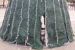Quegli squarci nell'albero di Natale in piazza Vittorio Emanuele