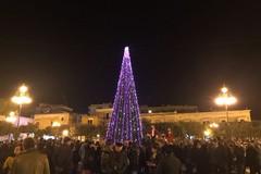 Venerdì 7 dicembre l'accensione dell'albero di Natale in piazza Vittorio Emanuele