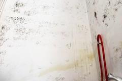 Bagni pubblici negli uffici comunali di via Terlizzi: ancora nessuna novità sul ripristino
