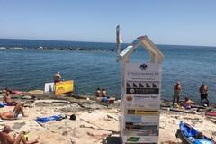 I bagnini di Baywatch tornano sulle spiagge biscegliesi