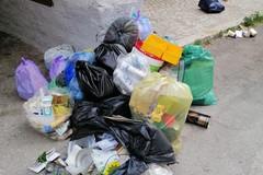 Vittorio Fata incalza l'amministrazione: «Quali interventi igienico-sanitari sono stati previsti?»