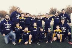 """""""I valori dello sport"""", service del Rotary Club col Bees Rugby"""