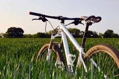 """Seimila chilometri in bici per l'ambiente: il progetto """"Life Sic2sic"""" ha fatto tappa a Bisceglie"""