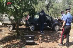 Ruba l'auto a un agricoltore biscegliese e prova a estorcergli denaro: arrestato