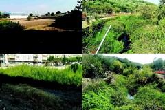 Finanziamento regionale di 47mila euro per manutenzione sul demanio idrico superficiale