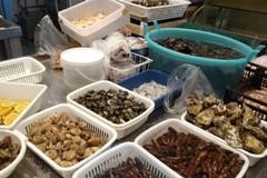 La Guardia Costiera sequestra prodotti ittici non tracciati in due ristoranti di Bisceglie