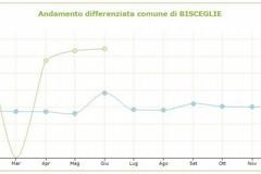 Differenziata: finalmente pubblicati i dati del comune di Bisceglie