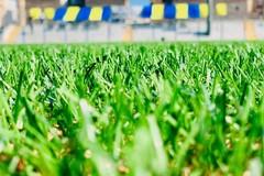 Don Uva sconfitto dal Real Siti Stornarella