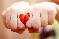 Giornata nazionale della donazione degli organi, Aido Bisceglie in prima linea
