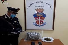 Brindisini bloccati a Bisceglie con 1.2 kg di marijuana in auto