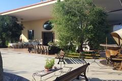 Pronti, ripresa e via: le Aziende Agricole Di Martino pronte per l'estate