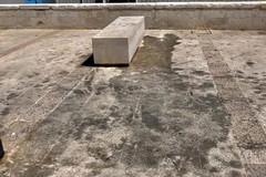 Marco Di Leo sulle precarie condizioni igienico-sanitarie in via Nazario Sauro: «Di chi è la colpa?»