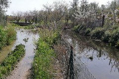 Riuso acque reflue, Caracciolo conferma: «Presto un impianto a Bisceglie»
