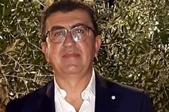 Olio Evo, Forza Italia: «Stop ai ribassi. Il Governo tuteli i produttori con un meccanismo di controllo del prezzo»