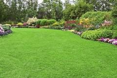 Consigli per un giardino perfetto tutto l'anno