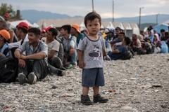 Giornata mondiale del rifugiato, film e dibattito anche a Bisceglie