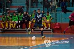 Futsal Bisceglie fuori a testa alta dalla Coppa Divisione