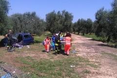 Si ribalta con l'auto sulla provinciale Bisceglie-Andria e sbatte contro un albero