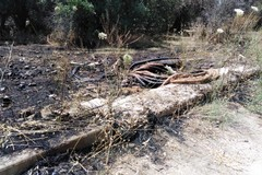 Incendio in contrada Macchione, intervento di Polizia Locale e Vigili del Fuoco