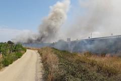Incendio in zona Lama di Macina
