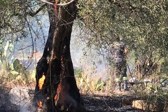 Incendio nei pressi delle grotte del Finestrino