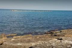Ridotti i divieti di balneazione sulla costa biscegliese
