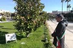La città ricorda commossa il sacrificio di Sergio Cosmai